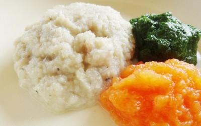 魚とほうれん草と人参のペースト(調理時間:約5分) 対象:初期から